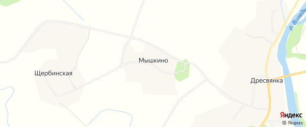 Карта деревни Мышкино в Архангельской области с улицами и номерами домов