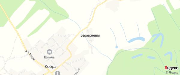 Карта деревни Бересневы в Кировской области с улицами и номерами домов