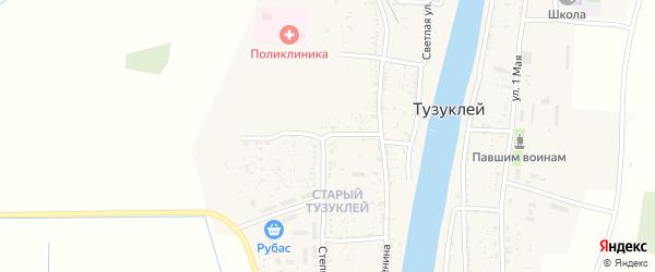Улица Космонавтов на карте села Тузуклей Астраханской области с номерами домов