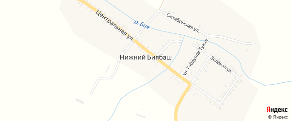 Улица Профессора на карте села Нижнего Биябаша Татарстана с номерами домов