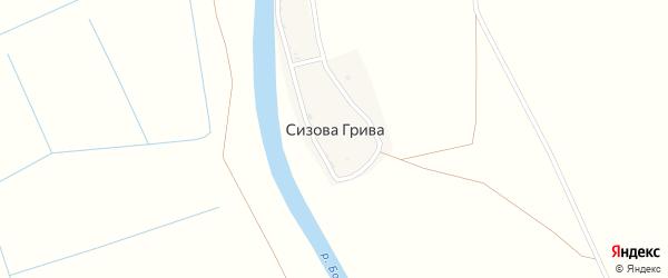 Улица Маяковского на карте поселка Сизовой Гривы Астраханской области с номерами домов