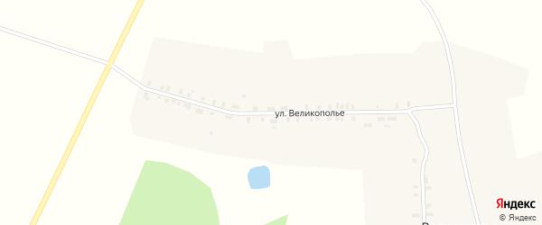 Улица Великополье на карте деревни Великополья Марий Эл с номерами домов