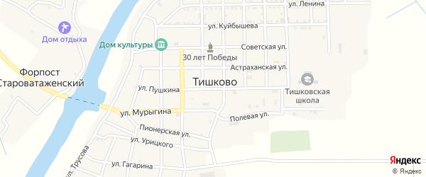 Улица Пушкина на карте села Тишково Астраханской области с номерами домов