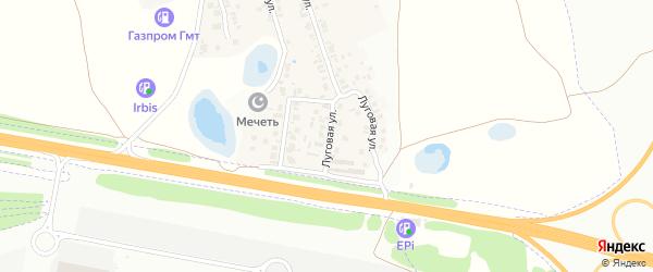 Луговая улица на карте села Новой Туры Татарстана с номерами домов