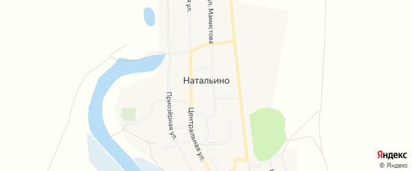 Карта села Натальино в Самарской области с улицами и номерами домов