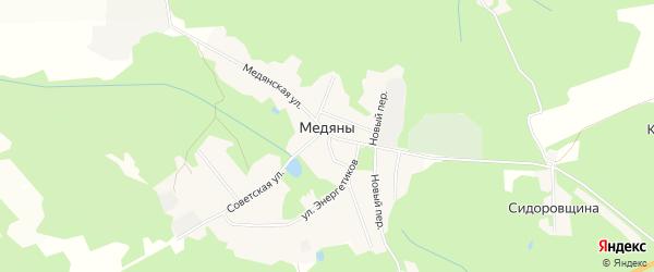 Карта территории сдт Медяны (Загарье) в Кировской области с улицами и номерами домов