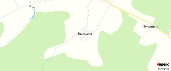 Карта деревни Брюханы в Кировской области с улицами и номерами домов