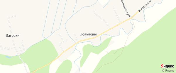 Карта деревни Эсауловы города Кирова в Кировской области с улицами и номерами домов