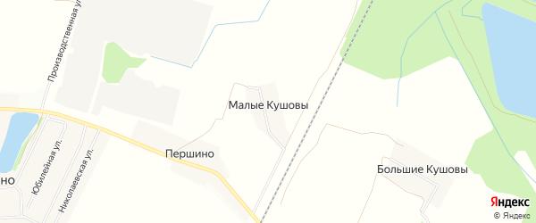 Карта деревни Малые Кушовы города Кирова в Кировской области с улицами и номерами домов