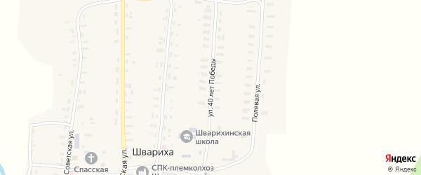 Улица 40 лет Победы на карте села Шварихи Кировской области с номерами домов