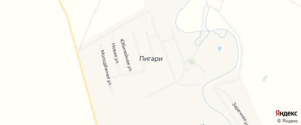 Карта села Пигари в Саратовской области с улицами и номерами домов
