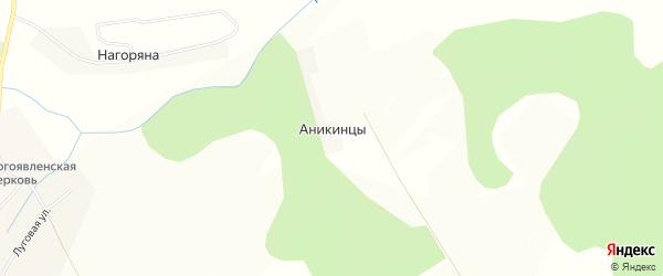 Карта деревни Аникинцы в Кировской области с улицами и номерами домов