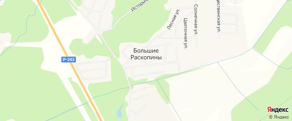 Карта деревни Большие Раскопины в Кировской области с улицами и номерами домов
