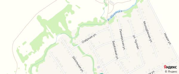 Озерная улица на карте села Малой Елги Татарстана с номерами домов