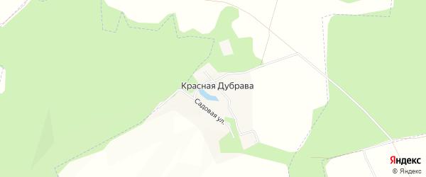 Карта села Красной Дубравы в Самарской области с улицами и номерами домов
