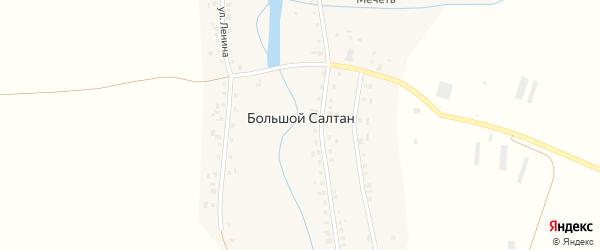 Малая улица на карте села Большого Салтана Татарстана с номерами домов