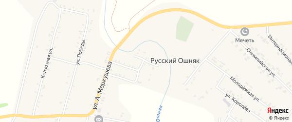 Заречная улица на карте села Русского Ошняка Татарстана с номерами домов