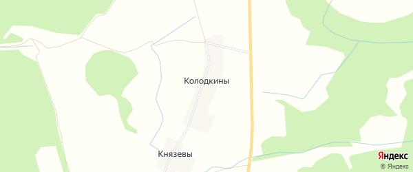 Карта деревни Колодкины в Кировской области с улицами и номерами домов