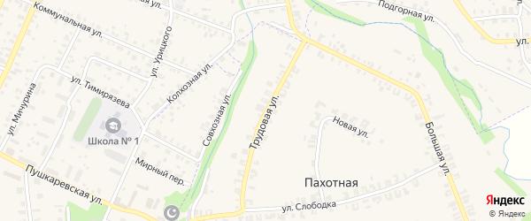 Трудовая улица на карте Пахотной деревни Кировской области с номерами домов