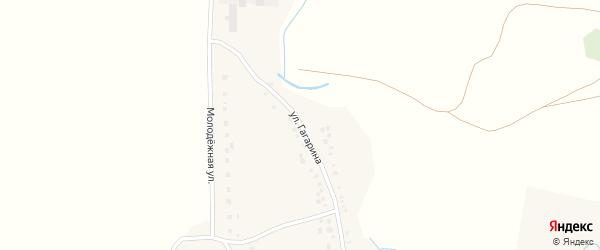 Улица Гагарина на карте села Нижние Челны Татарстана с номерами домов