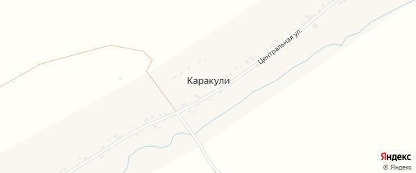 Молодежная улица на карте деревни Каракули Кировской области с номерами домов