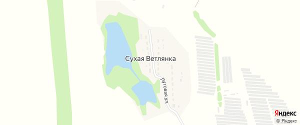 Лесная улица на карте поселка Сухой Ветлянки Самарской области с номерами домов