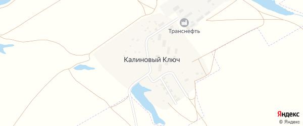 Улица Нефтяников на карте поселка Калинового Ключа Самарской области с номерами домов