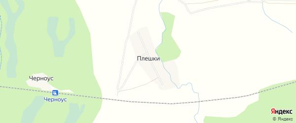 Карта деревни Плешки в Кировской области с улицами и номерами домов