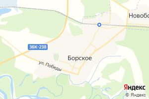 Карта с. Борское