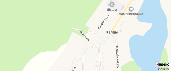Лесная улица на карте села Халды Удмуртии с номерами домов