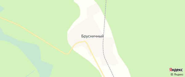 Карта Брусничного поселка в Кировской области с улицами и номерами домов
