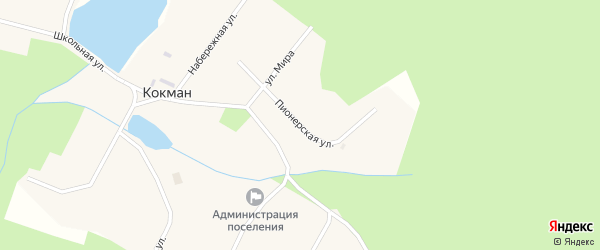Пионерская улица на карте села Кокмана Удмуртии с номерами домов