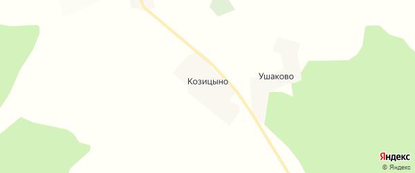 Карта деревни Козицыно в Кировской области с улицами и номерами домов