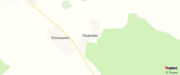 Карта деревни Ушаково в Кировской области с улицами и номерами домов