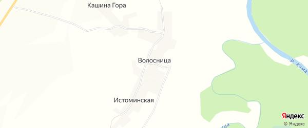 Карта села Волосницы в Кировской области с улицами и номерами домов