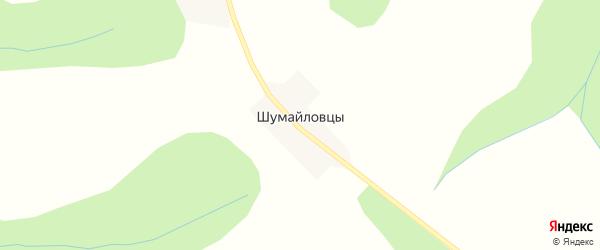 Дорожная улица на карте деревни Шумайловцы Кировской области с номерами домов