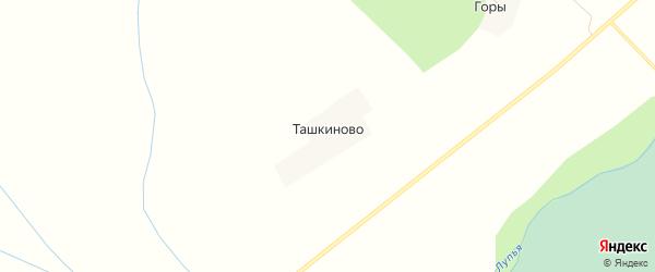 Карта деревни Ташкиново в Кировской области с улицами и номерами домов