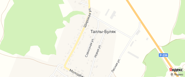Совхозная улица на карте деревни Таллы-Буляк Татарстана с номерами домов