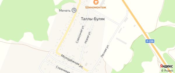 Новая улица на карте деревни Таллы-Буляк Татарстана с номерами домов
