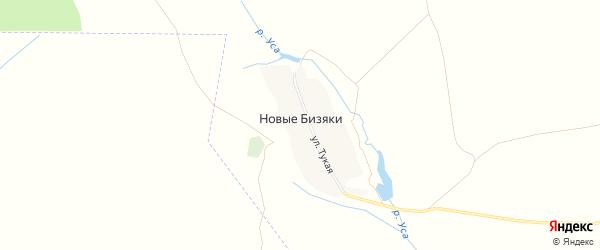 Карта деревни Новые Бизяки в Татарстане с улицами и номерами домов