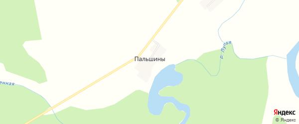 Карта деревни Пальшины в Кировской области с улицами и номерами домов