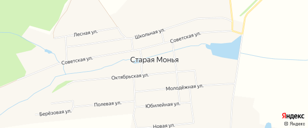 Карта Старой Моньи деревни в Удмуртии с улицами и номерами домов