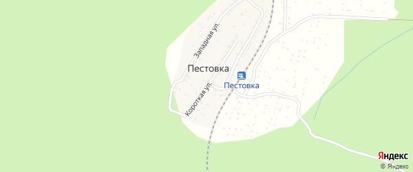 Короткая улица на карте деревни Пестовки Удмуртии с номерами домов