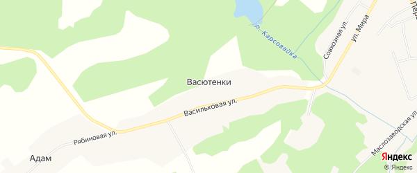 Карта деревни Васютенок в Удмуртии с улицами и номерами домов
