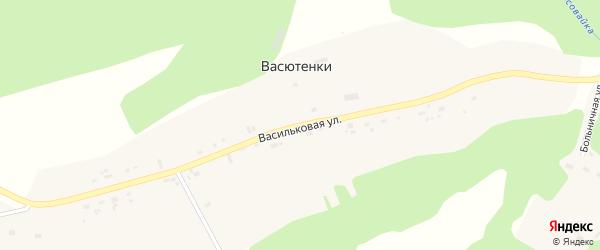 Васильковая улица на карте деревни Васютенок Удмуртии с номерами домов