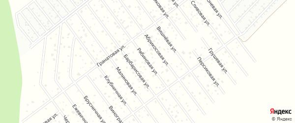 Рябиновая улица на карте территории Завьяловские садов Удмуртии с номерами домов