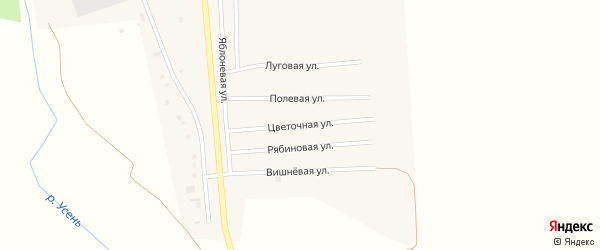 Цветочная улица на карте деревни Исмаилово с номерами домов