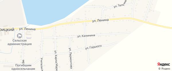 Улица Калинина на карте села Нижнетроицкого Башкортостана с номерами домов
