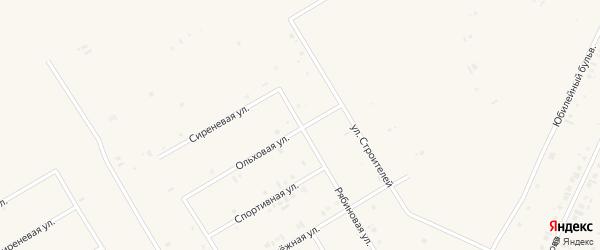 Рябиновая улица на карте села Бакалы Башкортостана с номерами домов