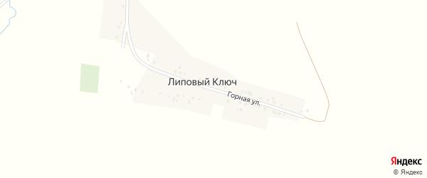 Горная улица на карте деревни Липового Ключа Башкортостана с номерами домов